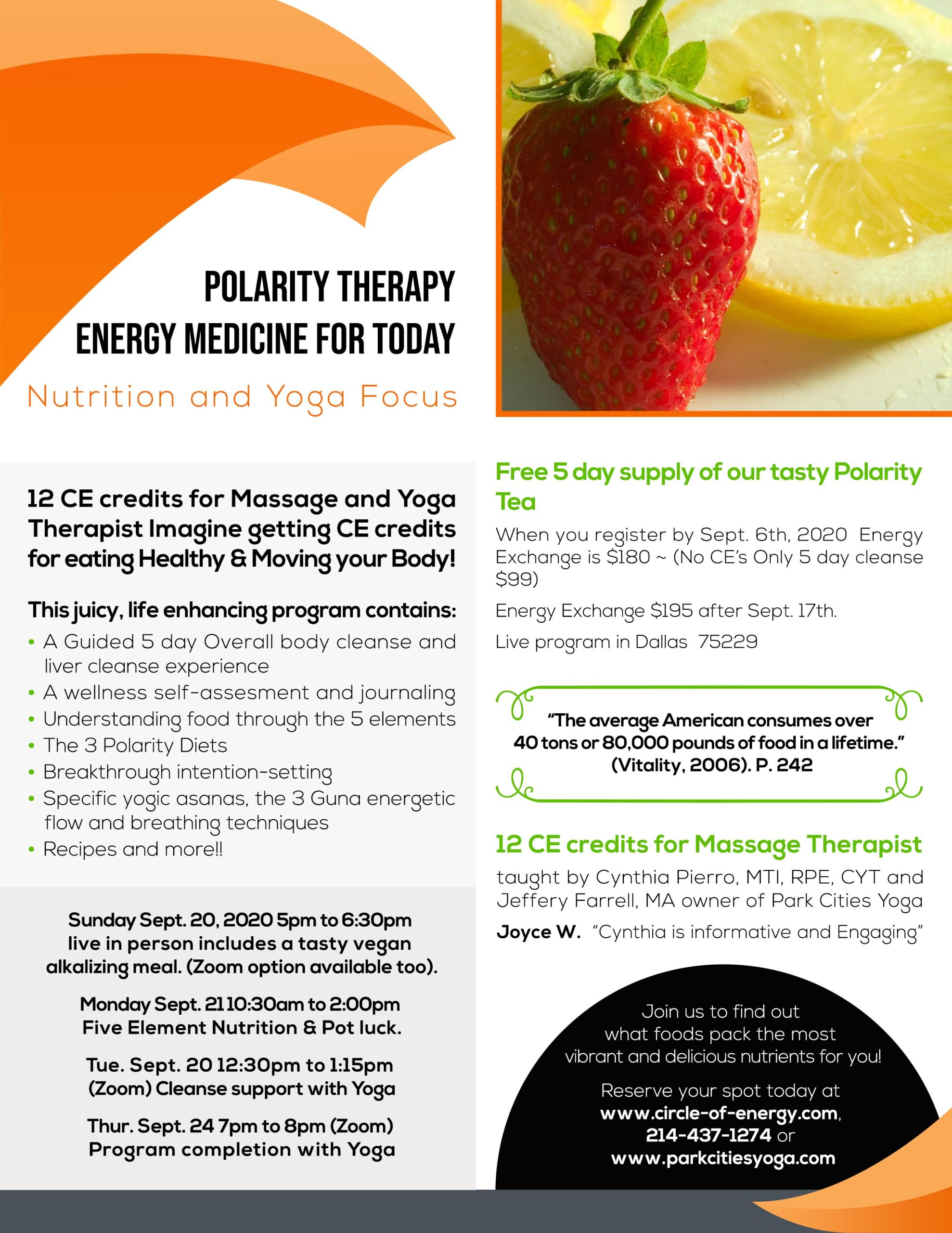 Polarity Therapy Energy Medicine